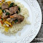 Wild Game Wednesday: Wild Turkey Stir Fry