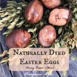 Naturally Dyed Easter Eggs Using Onion Skins