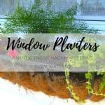My Secret for Watering Window Box Planters