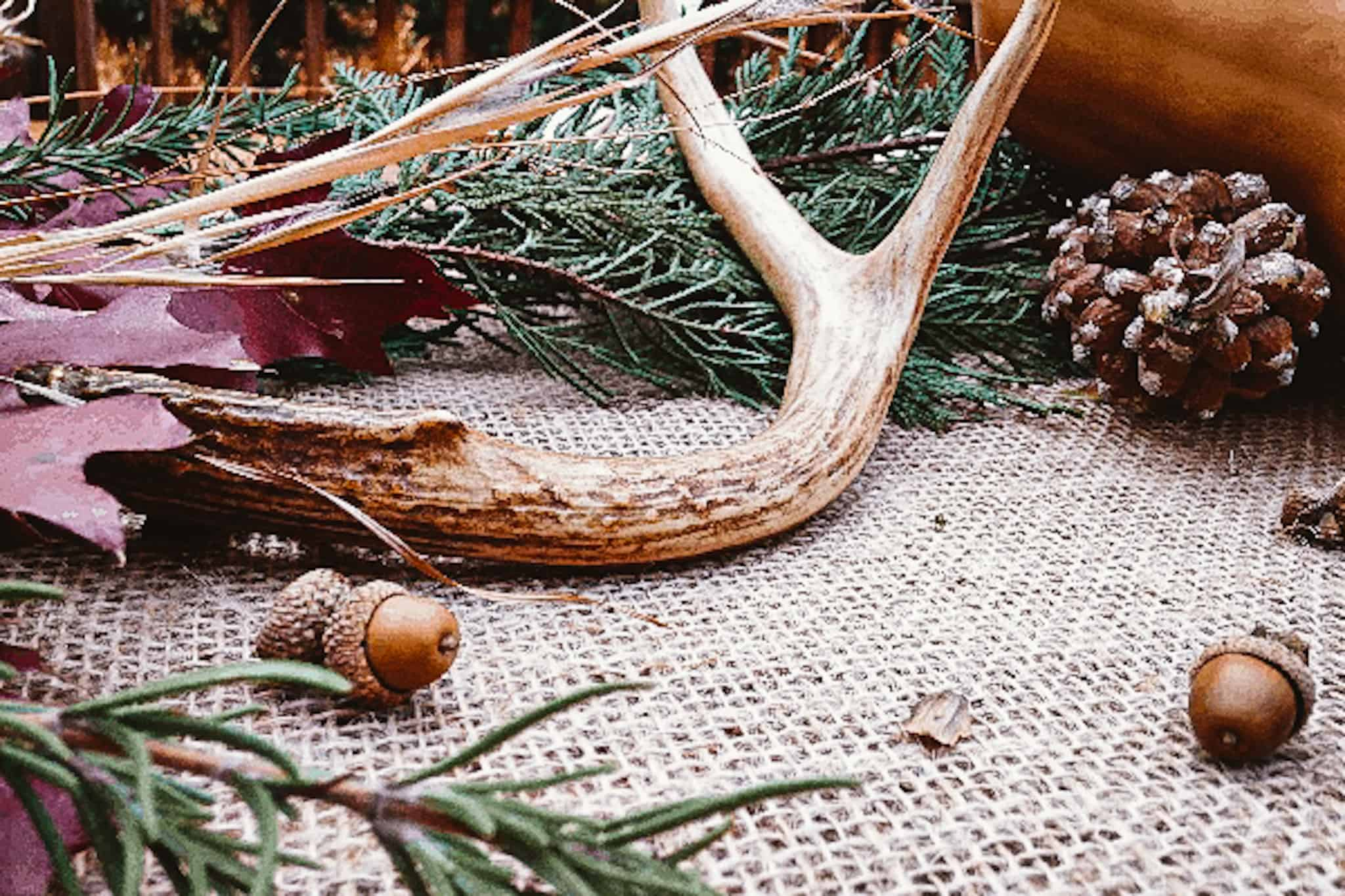 pinecones acorns fallen leaves and antlers on a burlap table runner create simple rustic fall decor