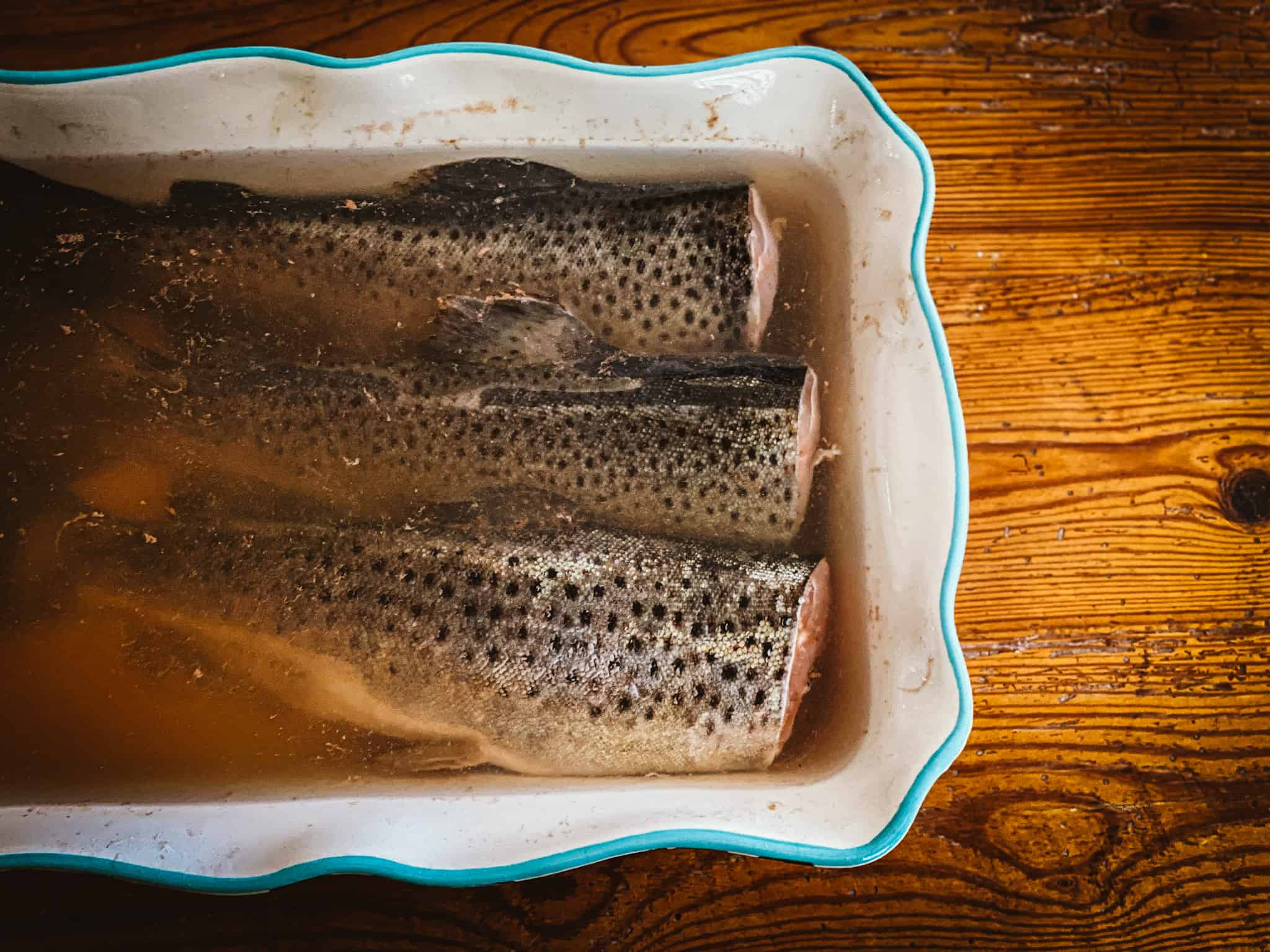 trout soaking in saltwater and honey brine