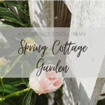 An Early Morning Stroll in the Late Spring Cottage Garden